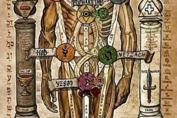 ermetismo e corpo umano